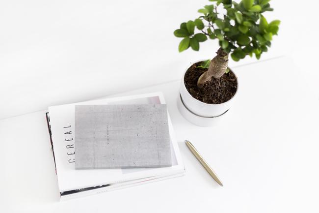 Notesy Studio of Basic Design