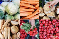 Rzodkiewka, marchewka, kapusta, seler, 10 warzyw, które pomogą Ci zadbać o zdrowie