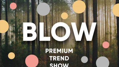 BLOW Premium Trend Show. PROGRAM SPOTKAŃ I WARSZTATÓW