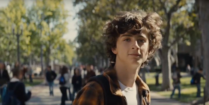 Timothée Chalamet , Mój piękny syn, Beautiful Boy