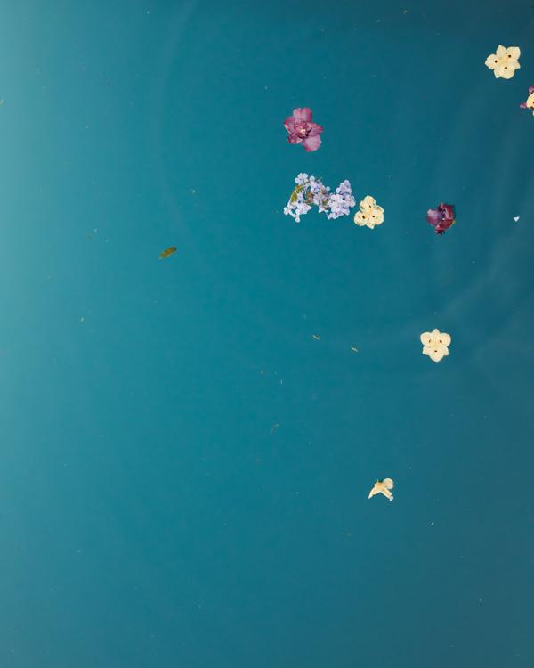 woda kwiaty