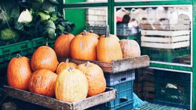 Jesienny sezon na dynię